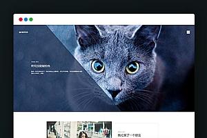 【博客文章类】织梦HTML5清新文艺个人织梦cms模板(支持移动设备)